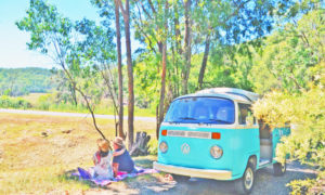Tourist Drive 33 Picnic spot