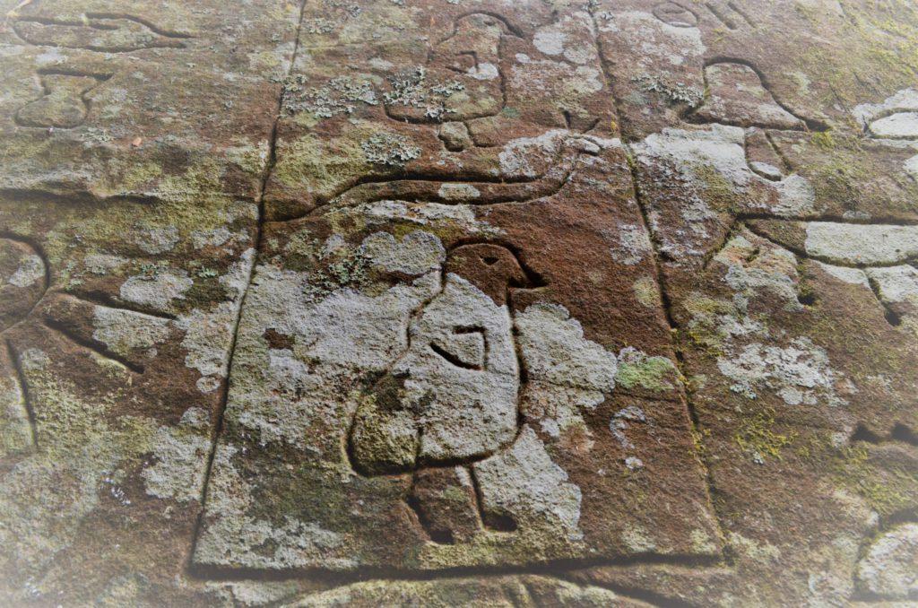 Gosford Hieroglyphs